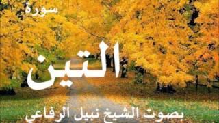 سورة التين بصوت نبيل الرفاعي