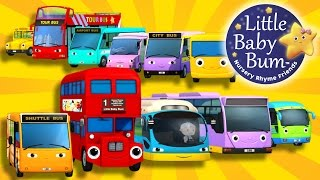 Bus Song | Different Types of Buses! | Nursery Rhymes | By LittleBabyBum!
