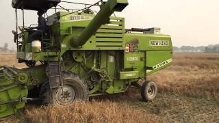 NEW HIND 999 - Multicrop Combine Harvester.