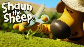 Spoilsport - Shaun the Sheep (Series 5)