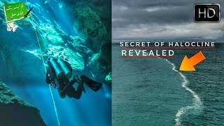 Scientists Finally Discovered Reason Behind Halocline