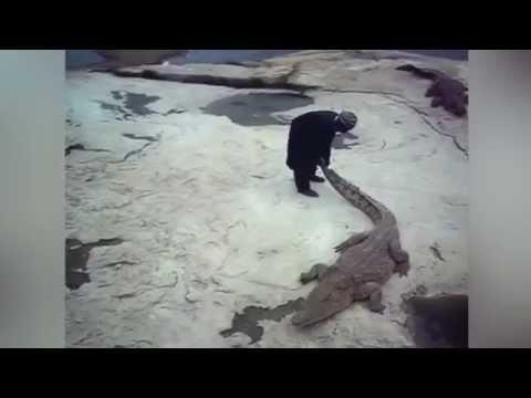 Hombre devorado por unos cocodrilos en Costa de Marfil Crocodile attack