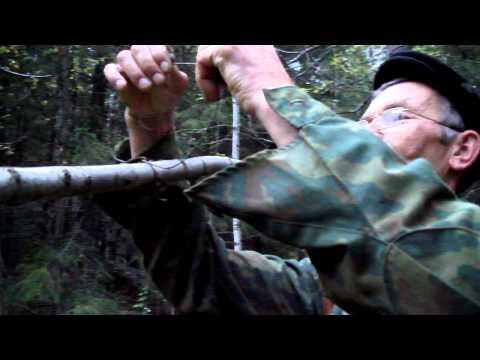 ловля глухарей видео