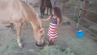 Horse lets this little girl get on by lifting her up with her neck
