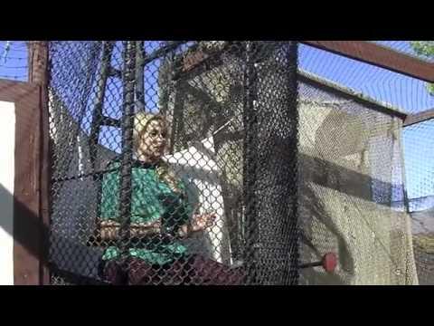 Xxx Mp4 Renaissance Faire WARNING Boobs YouTube 3gp Sex