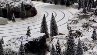 Exklusive Hundeschlitten Rennbahn mit Schneelandschaft