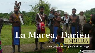 Birding with the embera people in La Marea