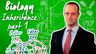 Inheritance (part 1) - Biology - Science - Get That C In your GCSE and IGCSE
