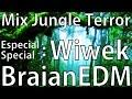 Download Lagu Braianedm - Jungle Terror Special Wiwek Mix