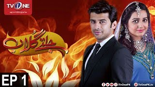 Jaltay Gulab | Episode 1 | TV One Drama | 10th November 2017