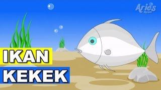 Lagu Kanak Kanak Alif & Mimi - Ikan Kekek (Animasi 2D)