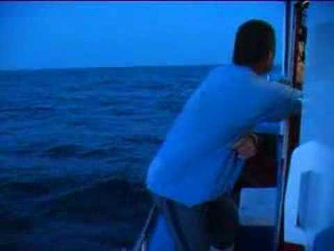 Pesca de Atún 1