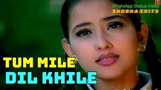 Tum Mile Dil Khile Aur Jeene Ko Kya Cahiye 💗 WhatsApp Status Video |  Criminal | by Shobha Edits
