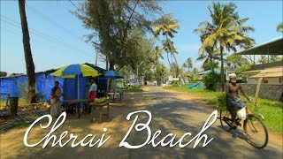 One  of the best beaches in South India - Cherai Beach