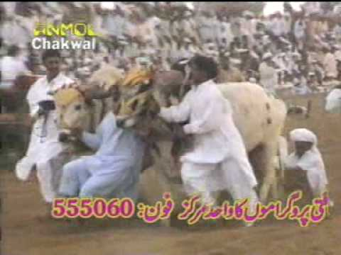 JHAMRA SHARIF CHAKWAL JALSA ON MELA 2009 AT ARAA BY MANI HAKAM PART 7.MPG