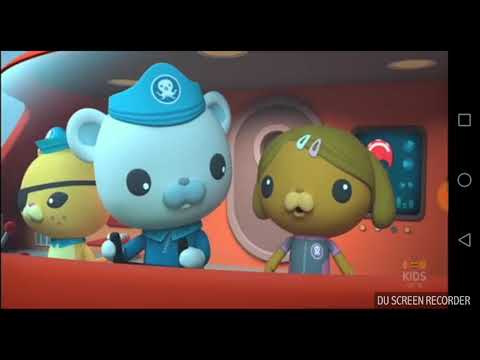 octonauts and the surfing snails