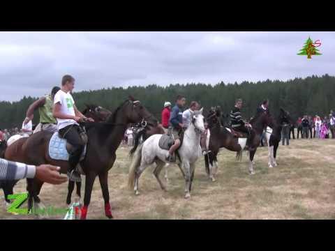 Trka konja Tić polje 22.07.2012