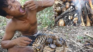 Real life living in forest, Cooking lake Snails for food