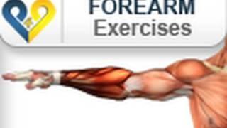 Forearm Exercises : Wrist Curls