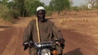 Avec l'aide de minuscules insectes Yacouba Sawadogo repousse le désert.