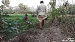 নোয়াখালী নাটক 01824408603