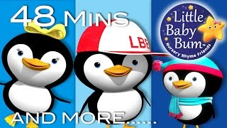 Five Little Penguins | Plus Lots More Nursery Rhymes | 48 Minutes Compilation from LittleBabyBum!