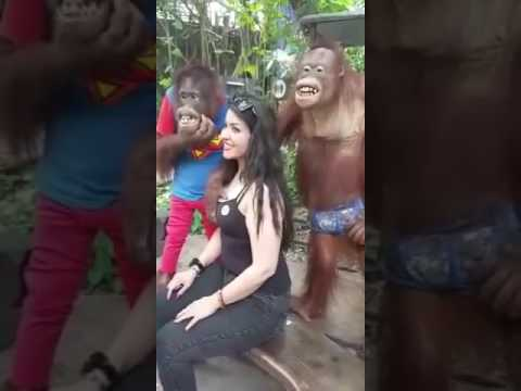 monky and girl