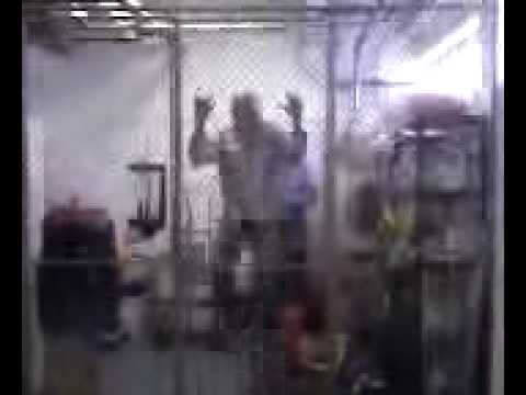 Monkey In A Cage (Do Not Be Gay Like This At Home)