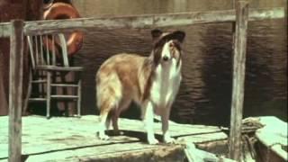 Lassie  Les Poissons Du Lac- 5