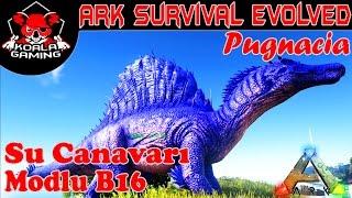 Spinosaurus vs Mosasaurus-Ejderha-Wyvern-Ark Pugnacia Mod-Ark Modlu Türkçe B16-Ark Survival Evolved