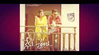 Nenu Shilaja Movie Song( E Premaki... )with Lyrics.