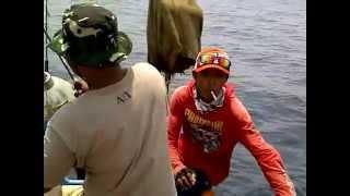 Jiging Tenggiri Delodberawah Negara Bali Team Gradag Jaya