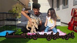 #7سلسلة أنا واختي ننو |أغرب أنواع تدريب القطط !!