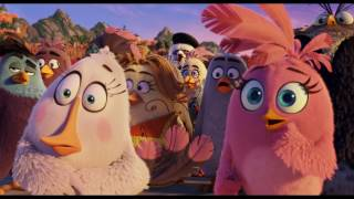 Angry Birds: Le film - Trailer
