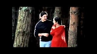 Yeh Haseen Waadiyaan | Roja |  S.P. Balasubrahmanyam, K.S. Chithra | A. R. Rahman | P.K. Mishra