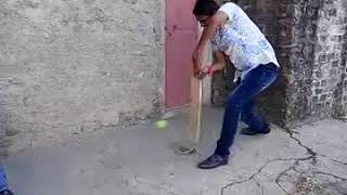Go cricket