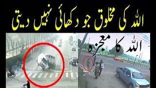 Invisible Creatures On Earth - Caught On Camera - Miracles Of Allah