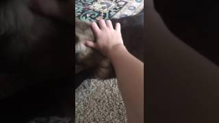 Rubbing my hairy pussy