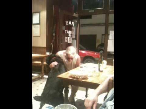 viole en publique dans un bar