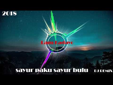 SAYUR PAKU SAYUR BULU - DJ REMIX TOP