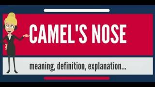 What Is CAMEL'S NOSE? What Does CAMEL'S NOSE Mean? CAMEL'S NOSE Meaning, Definition & Explanation