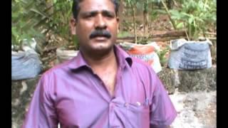 Samagra Pachakari Krishi Vikasana Padhathy : Punalur Municipality