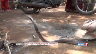 Snake Charmers in Sivagangai struggle to eke out a living