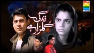 Zindagi Gulzar Hai Hum TV Drama LOGO