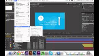 After Effects - Collect Project Source Files