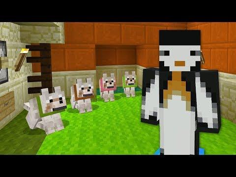 Xxx Mp4 Minecraft Xbox DESERT DOG HOUSE 419 3gp Sex