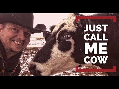 Xxx Mp4 Cow Terminology 3gp Sex