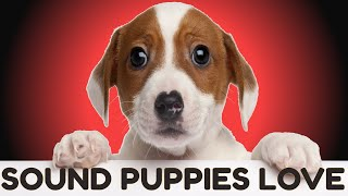 Sound Puppies Love To Hear | HQ