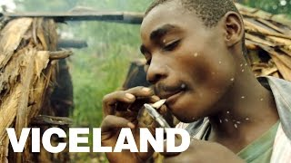Pot, Pygmys, and Rebels in the Congo: WEEDIQUETTE - Cannabis in Congo (Trailer)