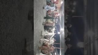 Sadiq afridi in Naimat ahmadzai wedding....